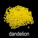 dandelionname