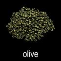 olivename